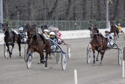 11/3/2012 Gran Premio Etruria. PER AMORE GUAL (Enrico Bellei) allenato da Holger Ehlert.