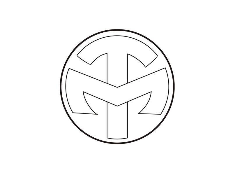 Laura Tommasini logo